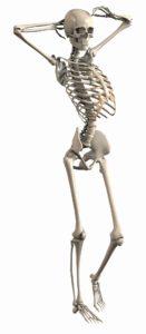 Skelett Kurs Botox